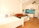 1147 apartment studio overview