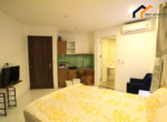 1180 terace Apartment rental city