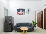 furnised serviced apartment tan binh
