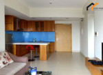 apartment-livingroom-room-studio-owner