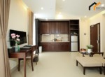 Saigon garage kitchen stove rent